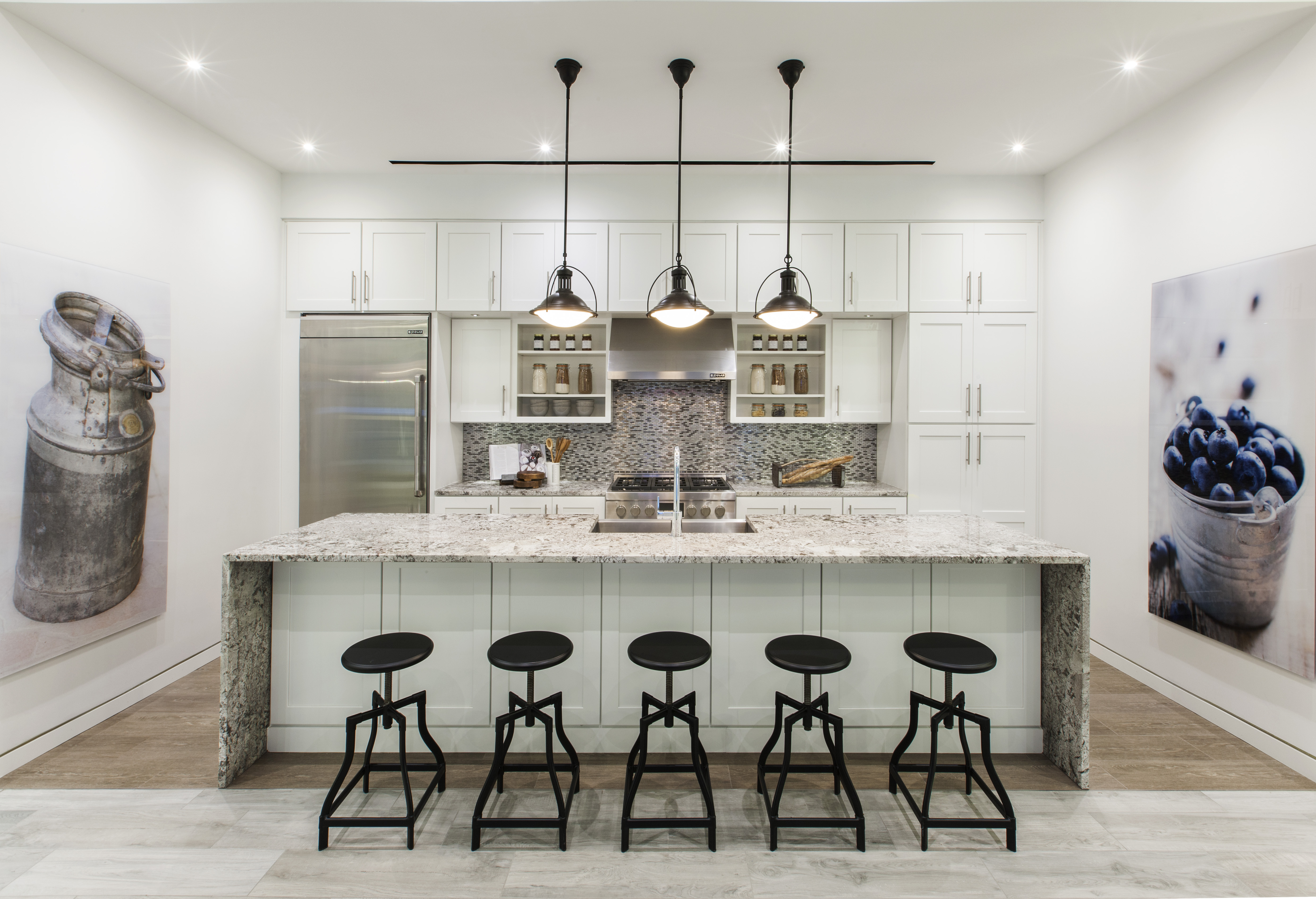 Culinary Dream Designs: Ideal Kitchens for the Home Chef