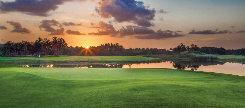 Marsh Cove Palacio, Naples - The Golf Club