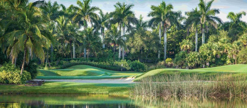Marsh Cove Palacio, Naples - The Golf Club Experience