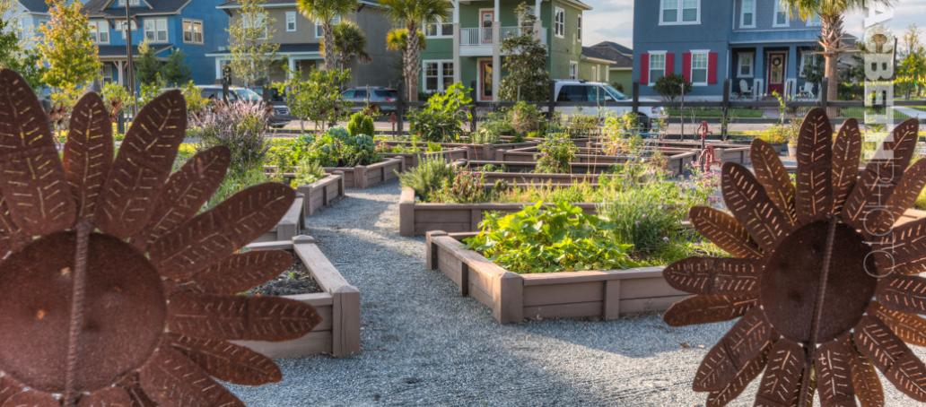 Laureate Park Executive, Orlando - Community Garden