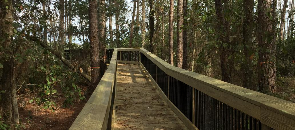 Latham Park, Orlando - 1,000 Foot Natural Preserve Boardwalk