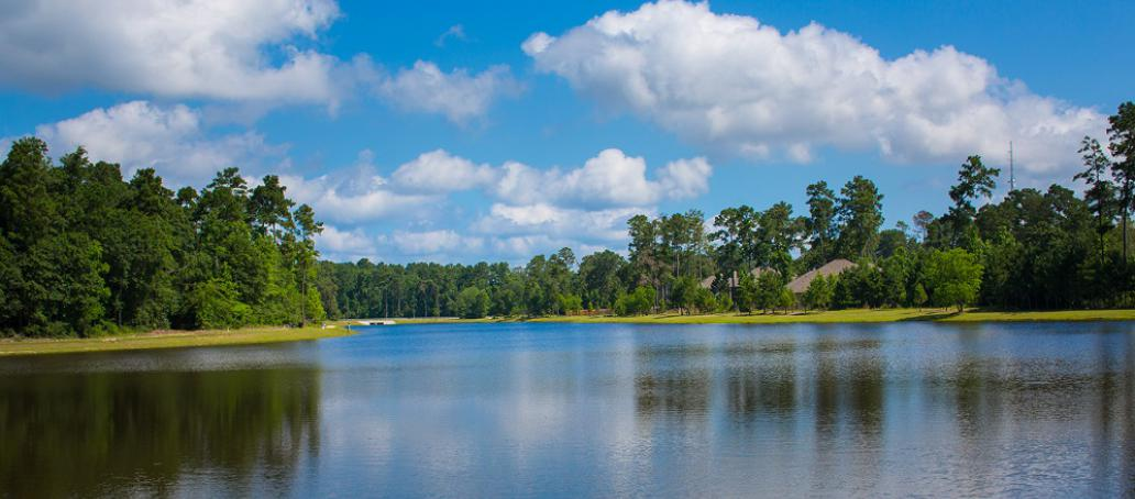 Woodtrace, Houston - Amenity Lake