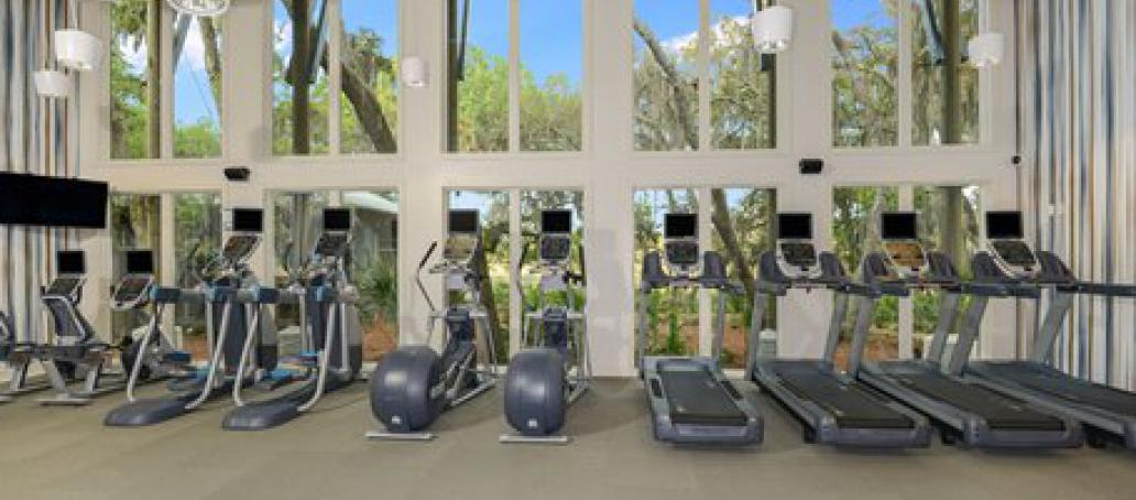 FishHawk Ranch Cottage, Tampa - Cardio Fitness Center