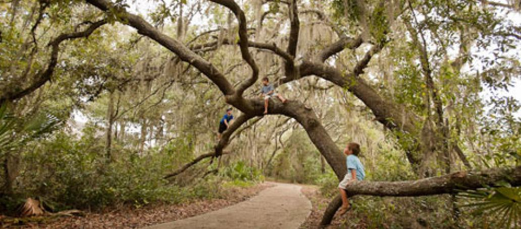 FishHawk Ranch, Tampa - Community Parks and Muse Areas