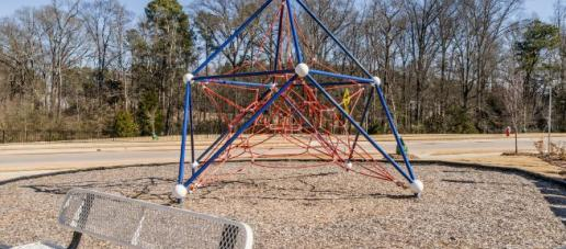 Savaan Manors, Raleigh - Playground