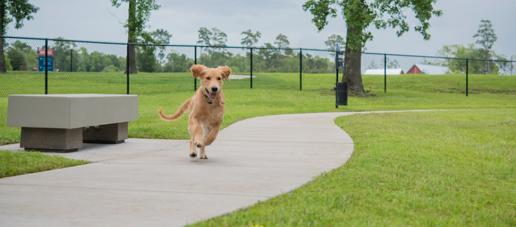 Northgrove, Houston - Dog Park