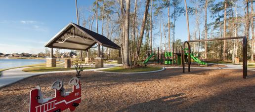 The Meadows at Imperial Oaks 50ft, Houston - Playground & Picnic Area