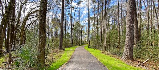 Marsh View Commons, Charleston - Stono River County Park Trails