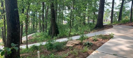 Serenade Single-Family Homes, Atlanta - Walking Paths