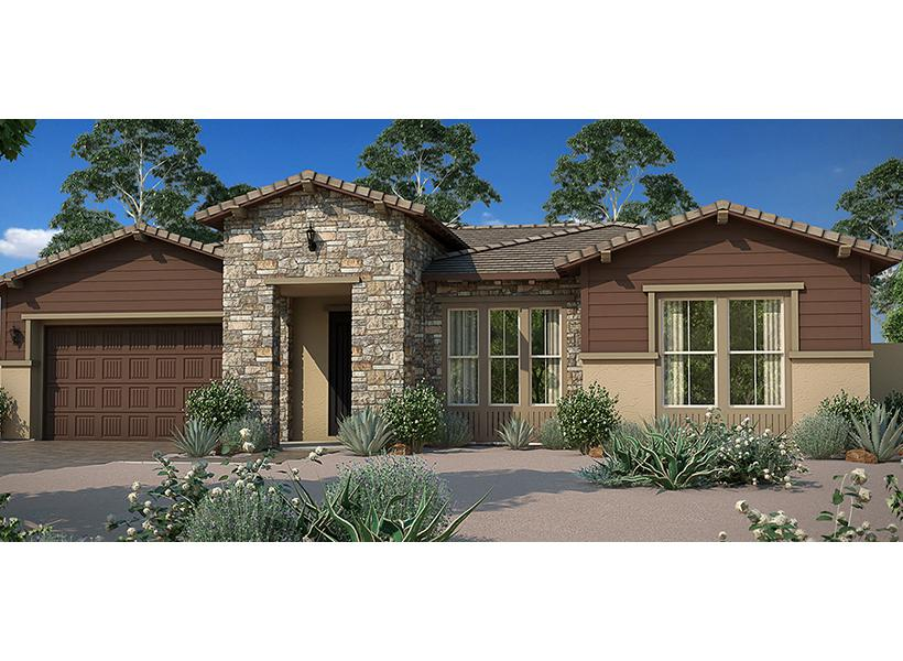 Cassia, Chandler - Elevation P